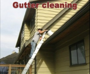 Gutter Cleaning Coquitlam